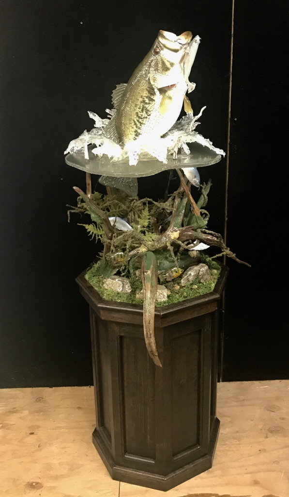 Fish Taxidermy World Award Winning Artist Vance Montgomery